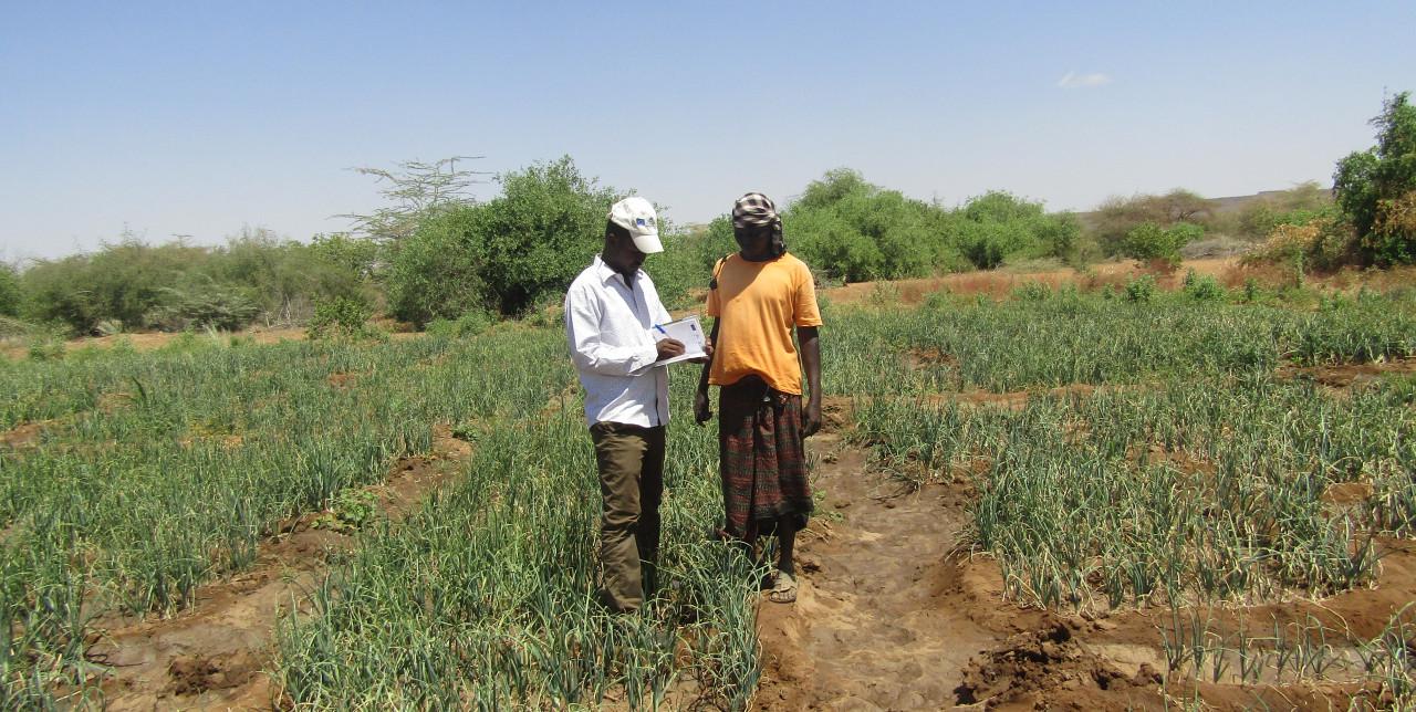 Somalia:  a brighter future for Mohamud