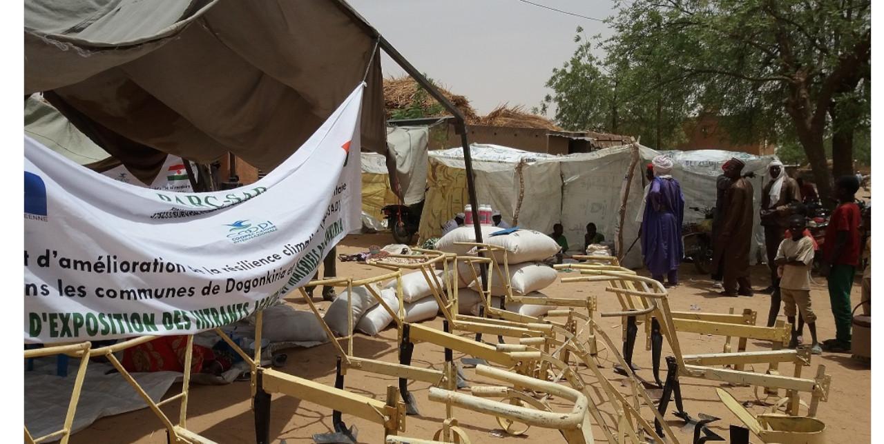 Niger: sementi migliorate per adattarsi ai cambiamenti climatici