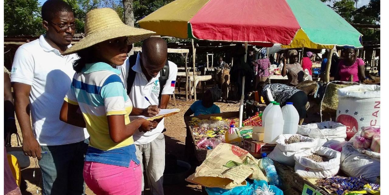 Haïti : Distribution de coupons cash et alimentaires dans les zones au risque sècheresse