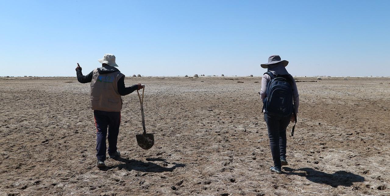 Lameo: tecnica millenaria di coltivazione della quinoa
