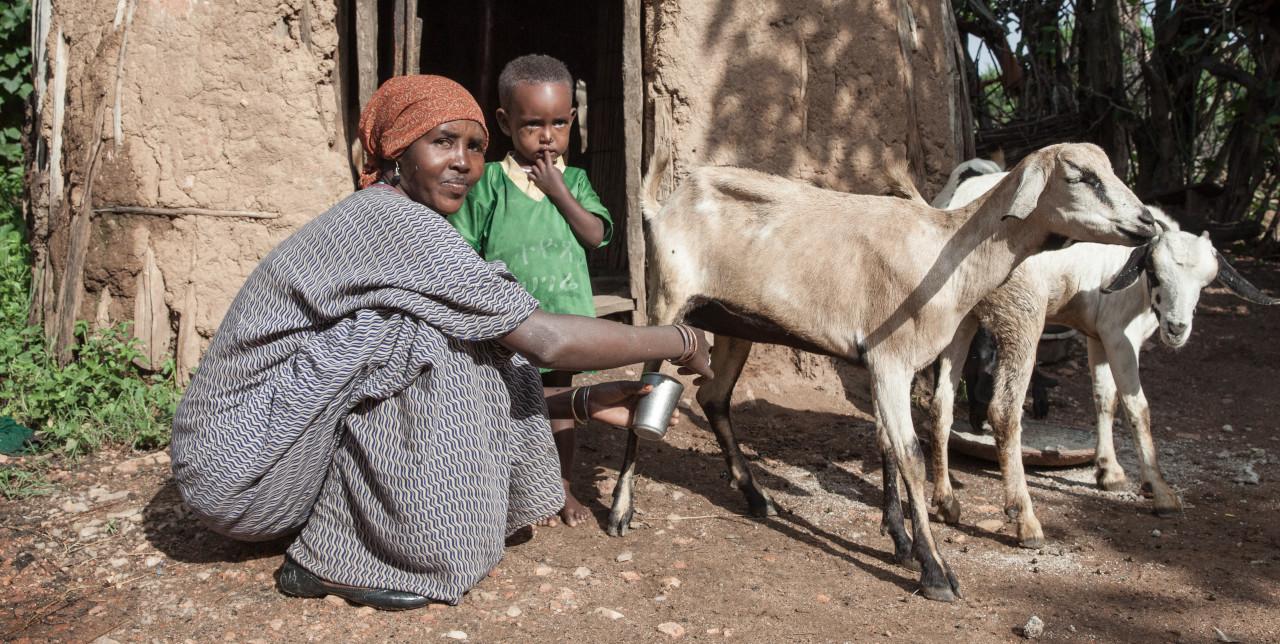 Lettera aperta per prevenire la fame nel mondo