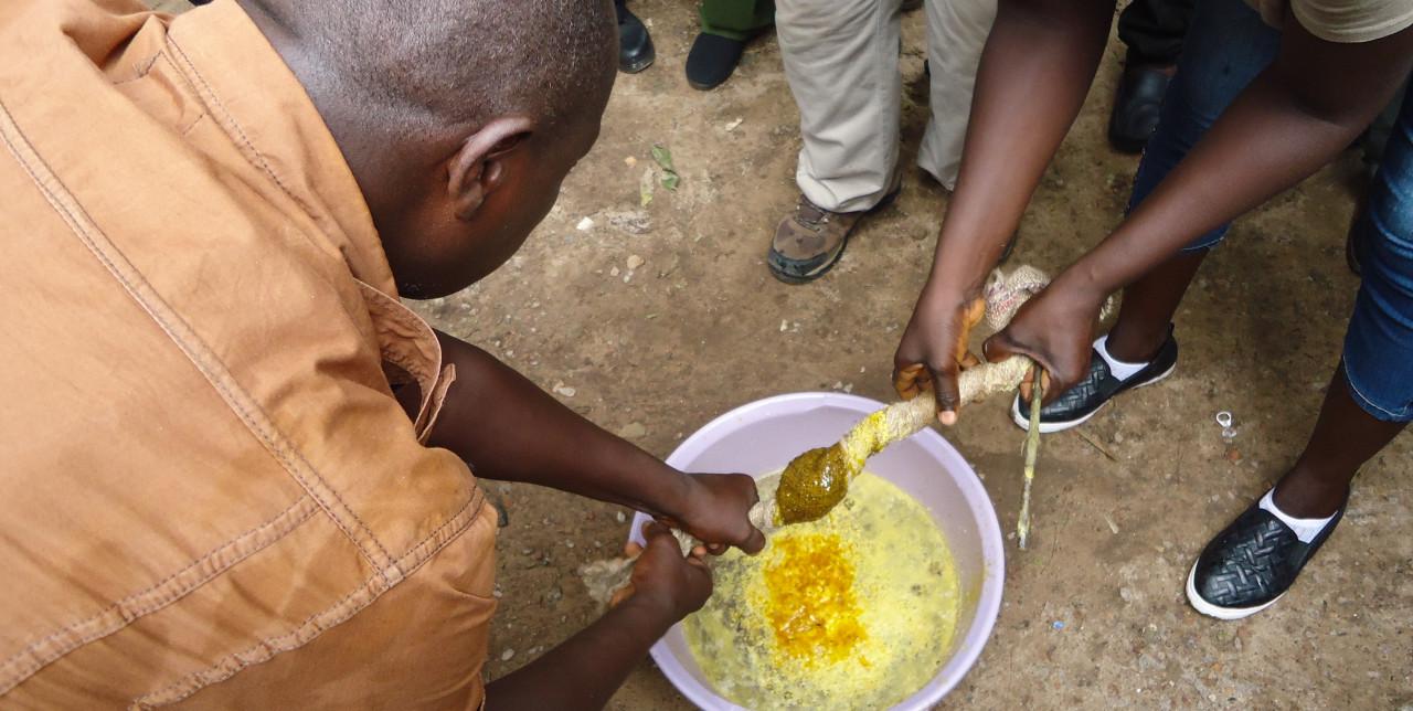 A scuola di apicoltura in Sierra Leone