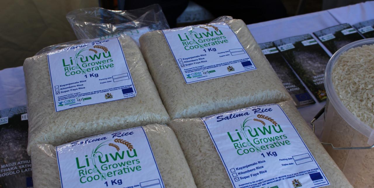 Malawi, Lifuwu farmers make their debut at the agribusiness fair