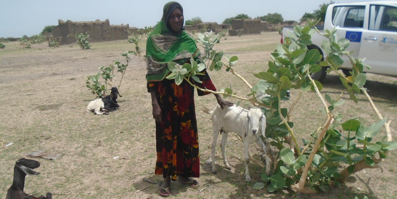 Un nuovo inizio per Khadidja, contro l?insicurezza alimentare